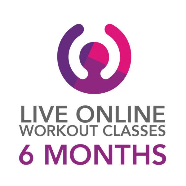 6 Months Online Classes